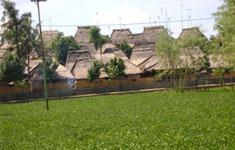 Sasak Houses