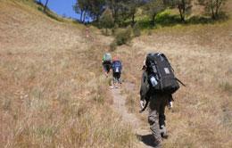 Kalimati Trekking