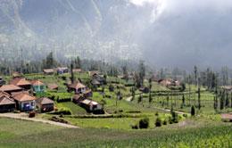 Cemoro Lawang Village