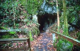 Milk Cave