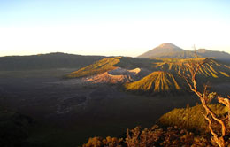 5 Must Do Activities in Mount Bromo