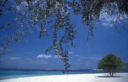 Paradise - Gili Nanggu