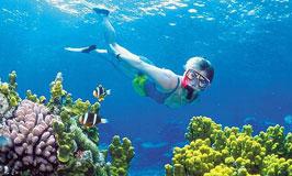 Gili Air Snorkeling Trip