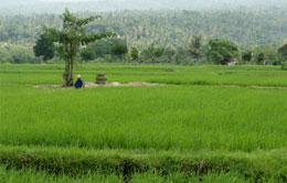 Lombok Soft Trekking Tour