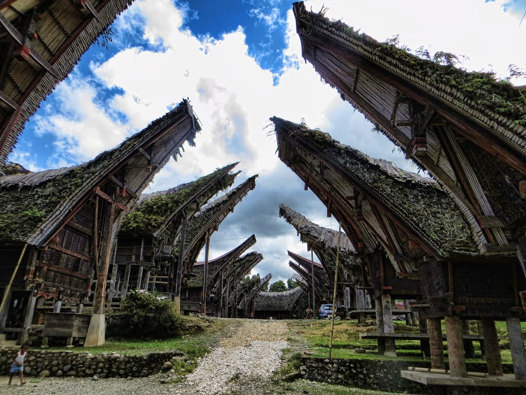Best Things to Do in Tana Toraja